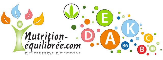 Création et Insertion d'une Bannière pour son Site e-commerce / Site de produit diététique / Illustrator